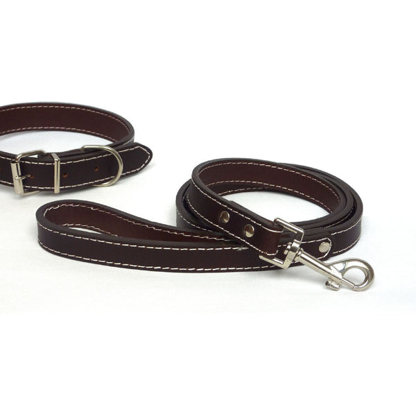 Plain Brown Leather Collar & Lead, Dog collar & lead, The Paws, Need Not Lift A Paw