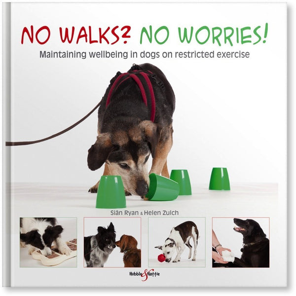 No walks? No worries! - Maintaining wellbeing in dogs on restricted exercise, Human dog book, Hubble & Hattie, Need Not Lift A Paw Limited