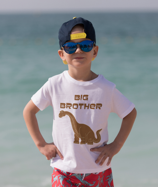 Gifts For Boys | Dino Brothers T-Shirt Sticker Set |HTV Dinosaur Decal - TD Gift Solutions.com