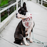 Dog Lover Gifts | Dog Bandana Valentines Day Gifts-Pet Bandana-TD Gift Solutions.com