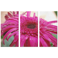48x32 Three Piece Pink Flower Canvas | The Art Of Pink-Canvas Wall Art Set 3-TD Gift Solutions.com