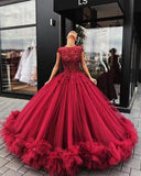 Red Tulle Ball Gown Prom Dress With Appliques, Sweet 16 Dress, Quinceanera Dresses, M278