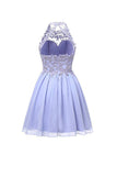 Fabulous Homecoming Dresses, Chiffon Short Prom Dresses, Bridesmaid Dresses,SH65
