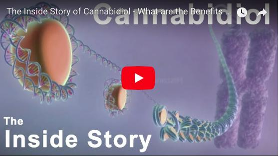 The Inside Story of Cannabidiol