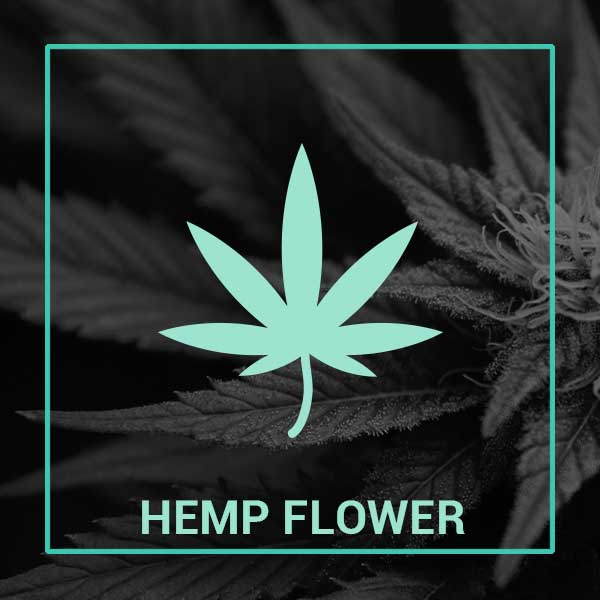 Buy Hemp Flower