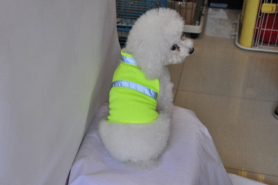 2017 New!!! Adjustable Reflective Dog Safety Vest --- High Visibility Protection for Your Pet!
