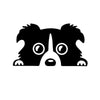Border Collie Car Sticker Black/Silver --- 5.5 x 3 inch