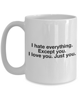 I Hate Everything Except You Valentine's Gift Mug