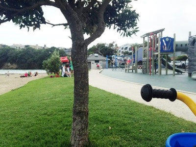 Our Top 10 Auckland Playgrounds
