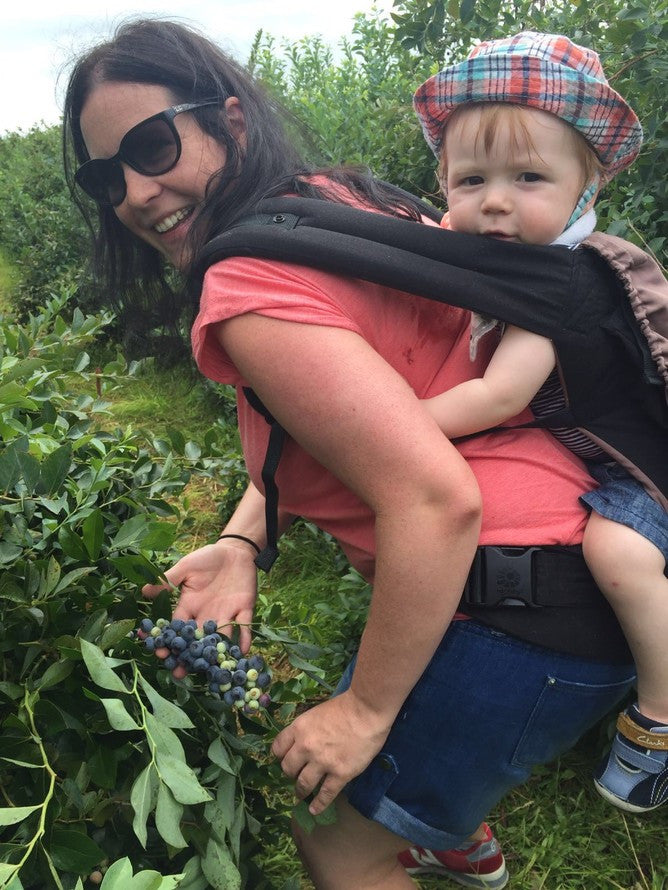 A fun activity for you to do with your toddler: Blueberry picking!
