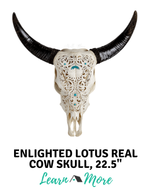 enlightened lotus carved cow skull