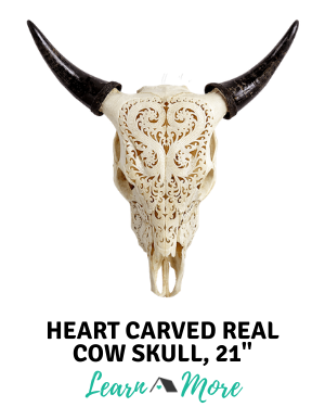 heart carved real cow skull