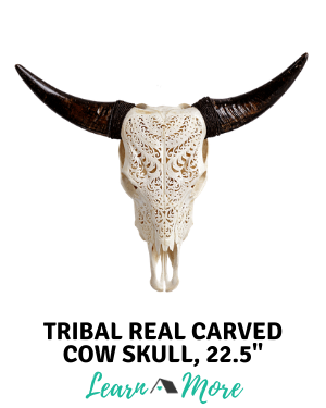tribal carved cow skull
