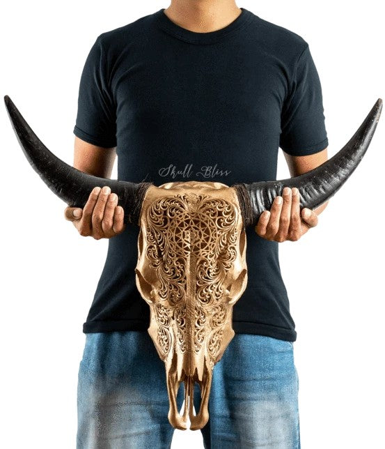 Real Golden Sun Carved Cow Skull