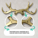 Gold Antler Wall Rack, 18""