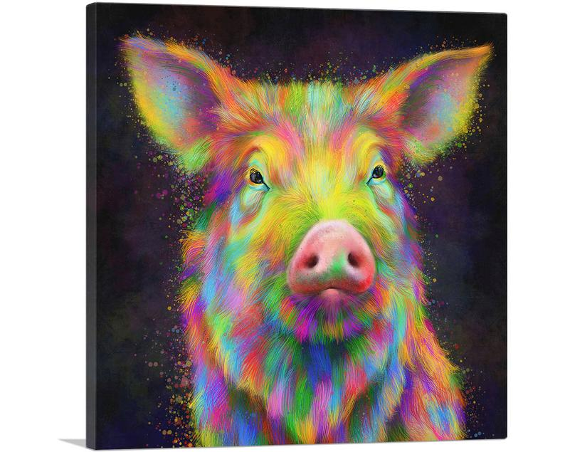 The Colorful Pig Animal Canvas