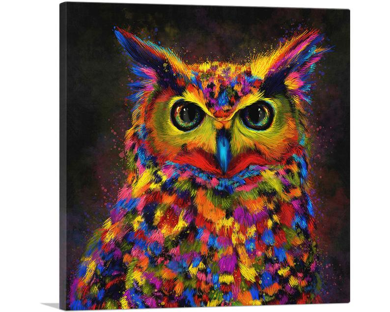 The Colorful Owl Canvas