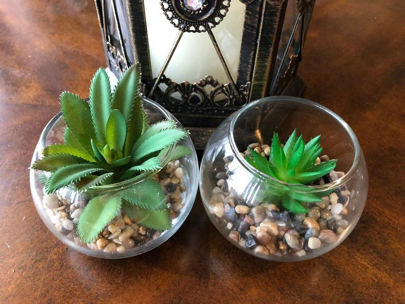 Set of 4 Artificial Succulents
