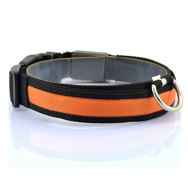 Nylon LED Collar - Canine Love Co.