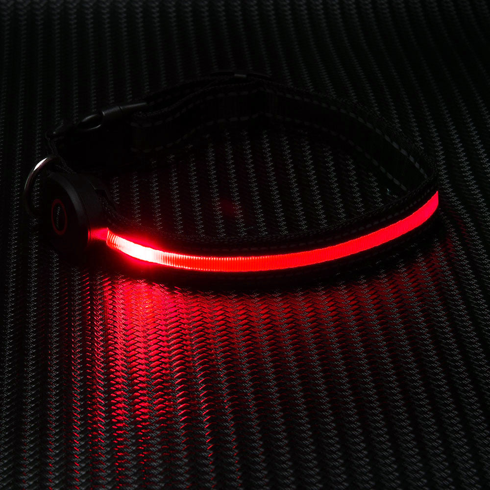 Rechargeable LED Collar - Canine Love Co.