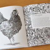 Farm Friends Colouring Book