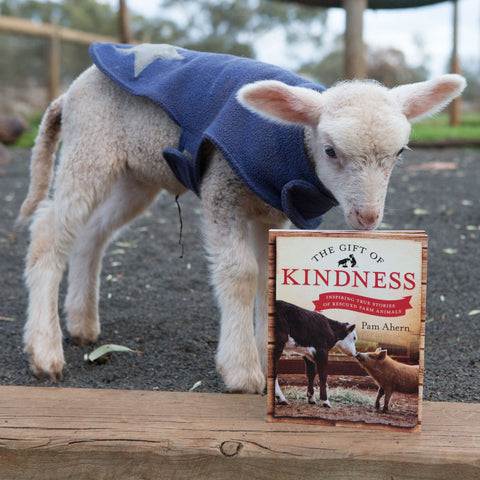 Gift of Kindness Book