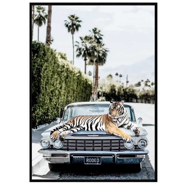 Rodeo Tiger Fashion Wall Art | Attica House Wall Art