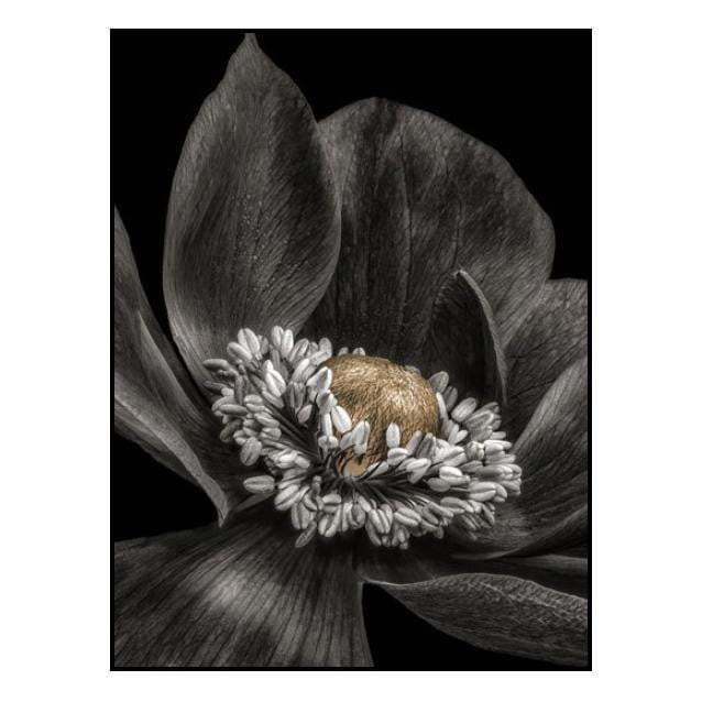 Gold Bud Flower Wall Art