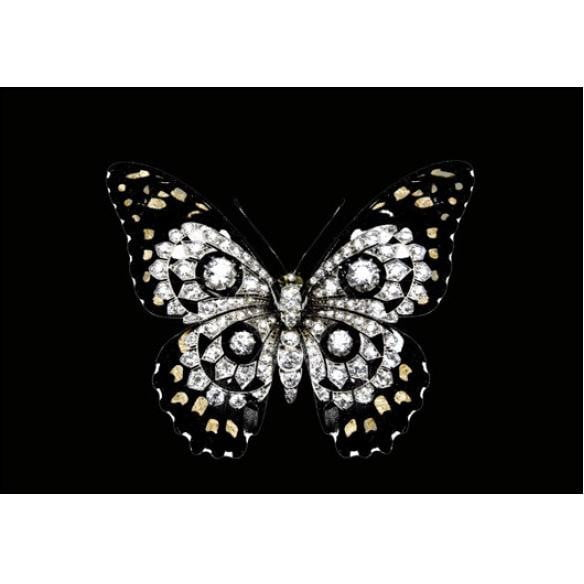 Jewel Butterfly Wall Art