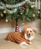 [FOR DOGS] Reindeer Outfit