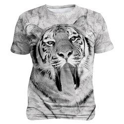 Tiger- Black and White
