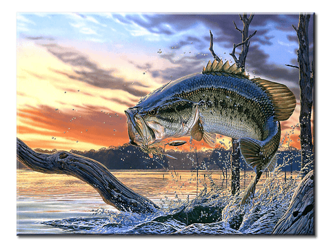 Large Mouth Bass Fishing- 1 Panel Canvas