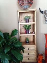 Rustic pine bookcase display living room