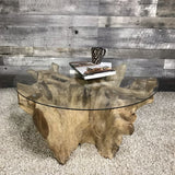 NATURE ROUND TEAK ROOT COFFEE TABLE - $849.00