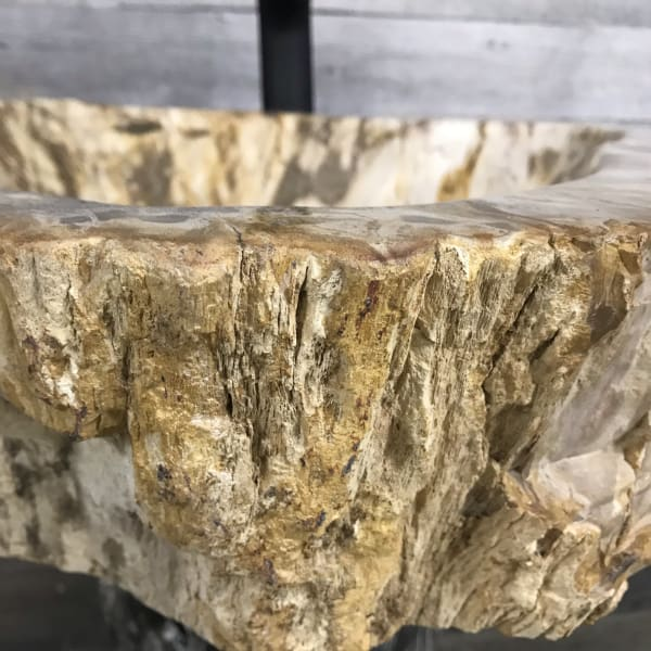 PETRIFIED WOOD STONE BATHROOM SINK #4