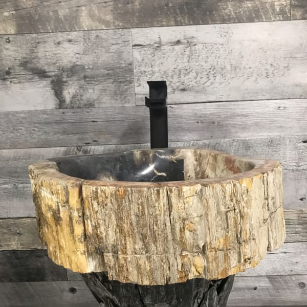 PETRIFIED WOOD STONE BATHROOM SINK #6