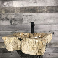 PETRIFIED WOOD STONE BATHROOM SINK #7