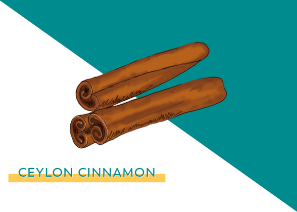 Support Healthy Blood Sugar & Circulation with Cinnamon ⚖️