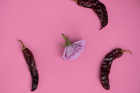 Rose with chili peppers on pink background