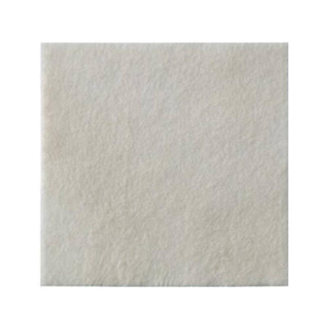 Biatain Alginate Dressing AG 15cm x 15cm x 10 Wound Dressings Coloplast- EasyMeds Healthcare LTD