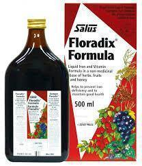 Salus Floradix Liquid Iron (500ml )