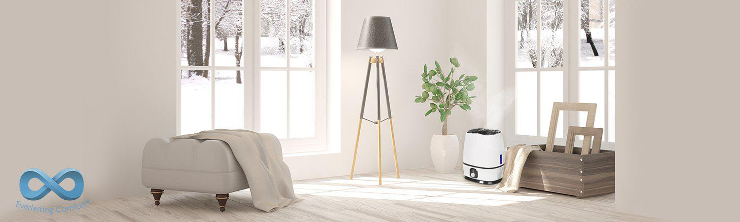 Why You Should Use a Humidifier for Winter
