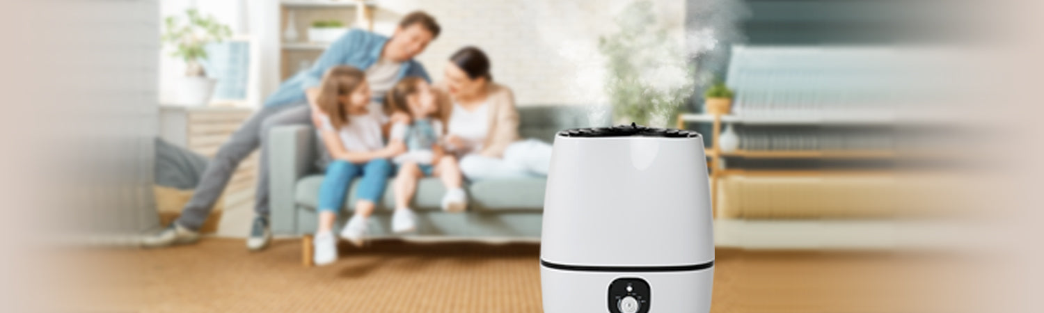 What Types of Humidifiers Are the Best?