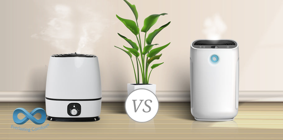 Cool Humidifier vs Warm Humidifier