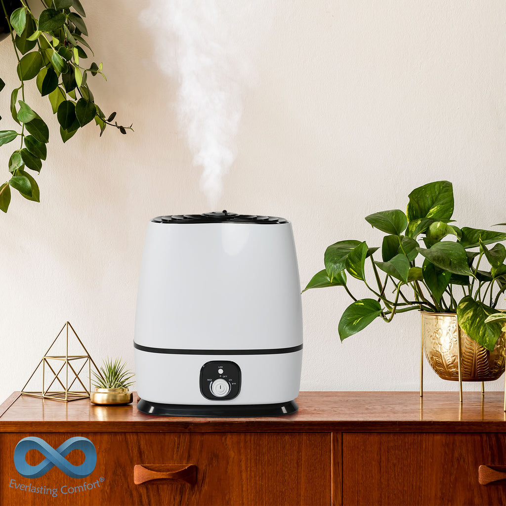 humidifier and plants
