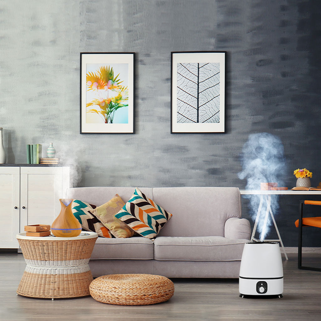 humidifier and oil diffuser in the living room