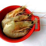 Prawn Powder