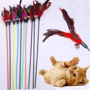 Multi-Colored Feather Pole With Bell For Cats - Wonderful Cats