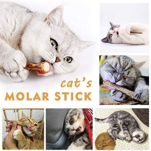 Organic Matatabi Silveine Dental Sticks For Cats (100% Natural) - Wonderful Cats