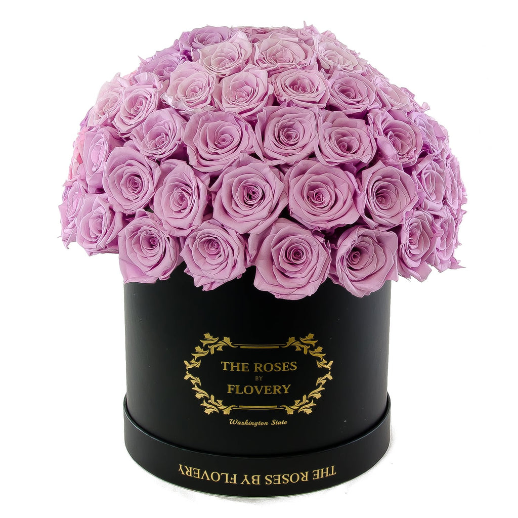Dome 120 Purple Roses Black Box - Flovery